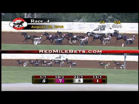 Red Mile Racetrack Race 4 8-18-2016