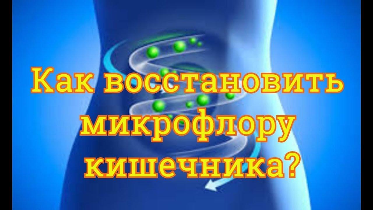 Как восстановить микрофлору кишечника после приема ...