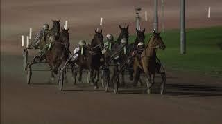Vidéo de la course PMU CHAMPIONNAT D'HIVER