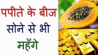 पपीते के बीज सोने से भी महँगे पपीते के बीज के चोंकाने वाले फ़ायदे Papaya Seeds Benefits In Hindi