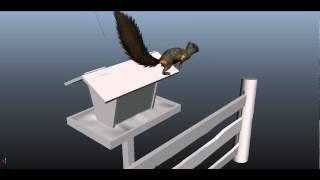 Squirrel stealing grain (Білочка краде зерно)