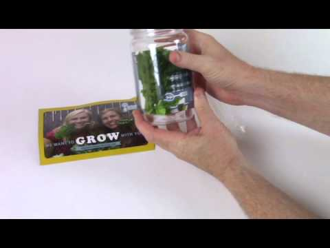 Unboxing the 6 Heirloom Non-GMO Leafy Greens Seed Kit