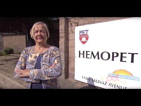 Hemopet On Fido And Wine Episode 3 03