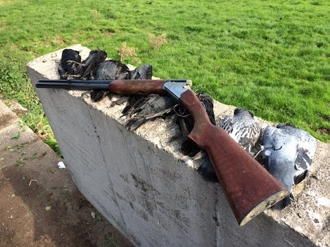 Gopro Shotgun Rig Amp 410 Dove Shoot Doovi