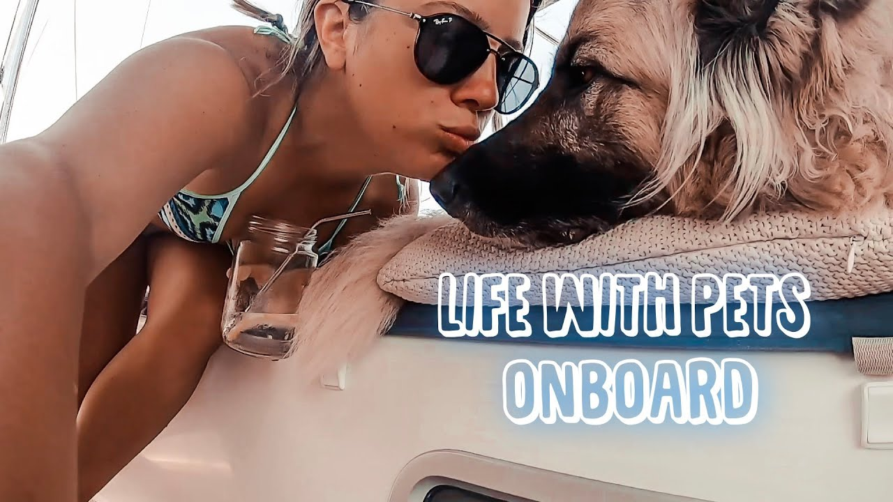 67. Boat Life with Pets | Sailing Turkey | Sailing Sunday