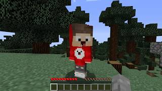 Minecraft Hide And Seek mit Lix