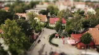 Little big Zelenogradsk
