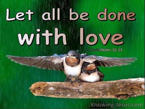 Devotional 315 - 'Love is above all' (1 Corinthians theme).