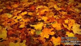 Qızıl Payız