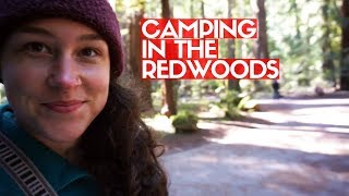 Camping In The Redwoods | Bullfrog Pond Campground, Guerneville, California