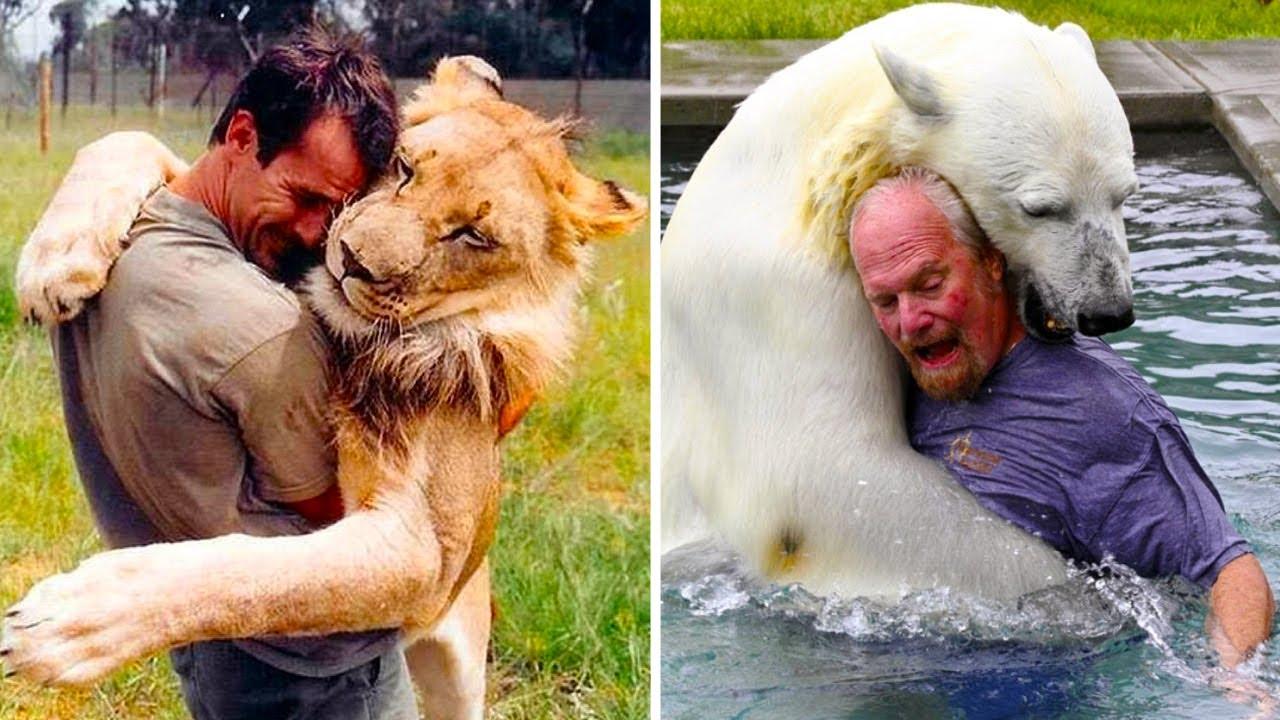 САМАЯ НЕОБЫЧНАЯ ДРУЖБА ЧЕЛОВЕКА С ДИКИМИ ЖИВОТНЫМИ. Топ 10 случаев дружбы людей с дикими животными.
