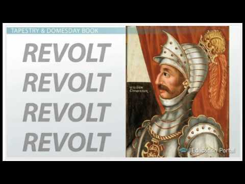 William the Conqueror and Politics