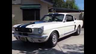 1966 Shelby Mustang GT350 Real Deal Walk Around Start