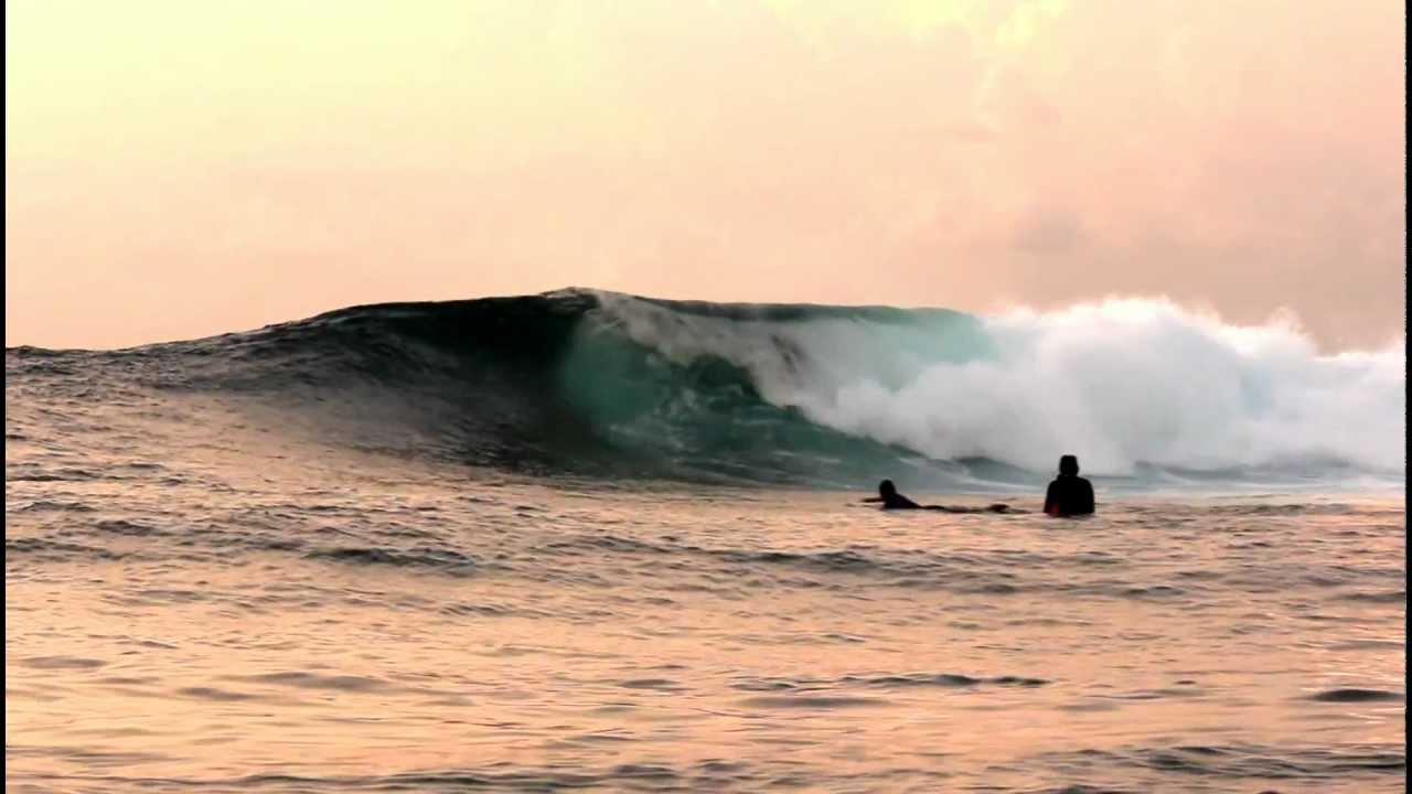 Surf 55