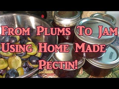 Plum Jam Made With Home Made Pectin