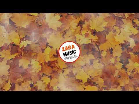 Андрей Леницкий & Homie - Это Лето Как Осень (Remix By Greenpeace) | Audio