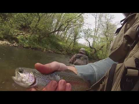 Trout Fishing The Pohatcong Creek In New Jersey