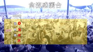 【City News】「禽」況危急 兩招面對禽流感 Thumbnail
