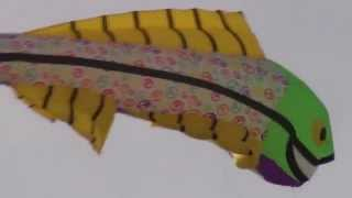 Big Fish Kite Comes to Coalinga Thumbnail