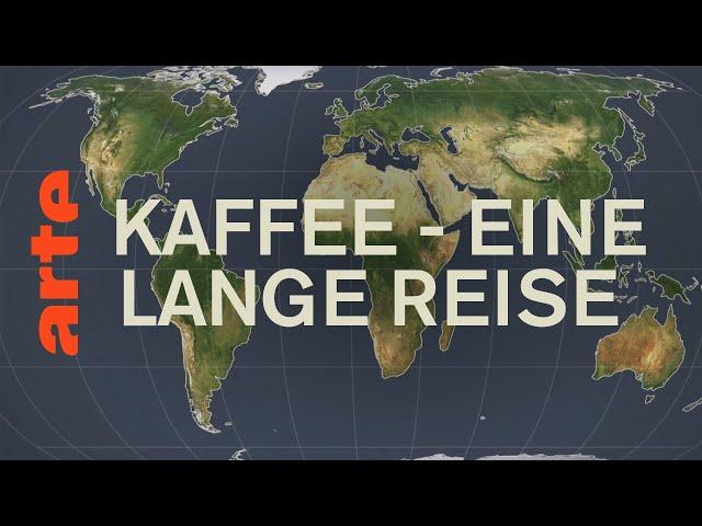 Der lange Weg des Kaffees | Mit offenen Karten | ARTE