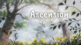 AMV | Ascension (Felemelkedés) | 2019 Spring Mondocon 5th place