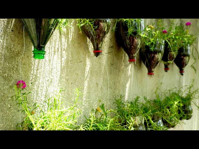 Flower gardening on wall | Space saving garden idea