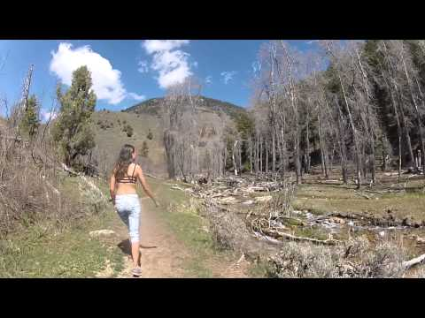 Logan, Utah - Temple Fork Sawmill Trail
