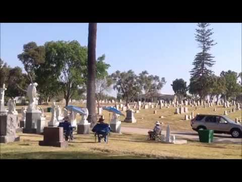 Greenwood Cemetery stop motion