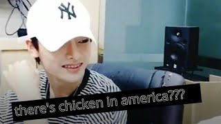 what stray kids lack in knowledge, they make up in good looks