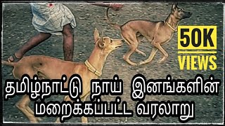 Tamil nadu dog breeds and its history in tamil