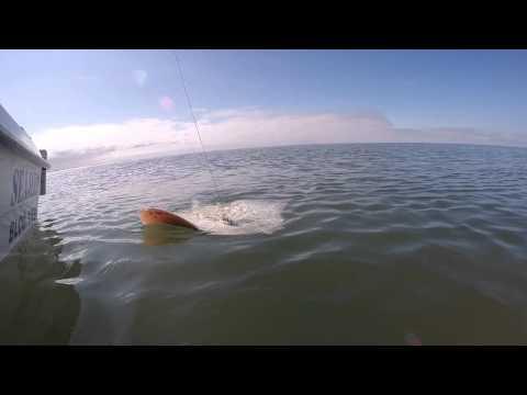 Wind Farm Fishing Trip. 54 Miles. Irish Sea. From Blackpool