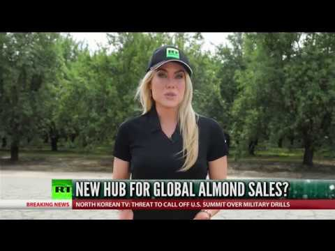 The New Global Hub For Almond Sales? thumbnail
