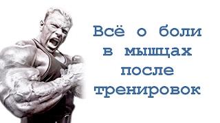 видео 1)