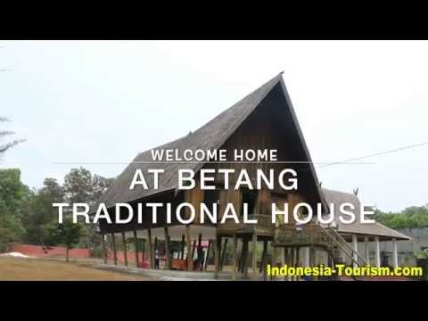 Betang, Dayak Traditional House - Central Kalimantan