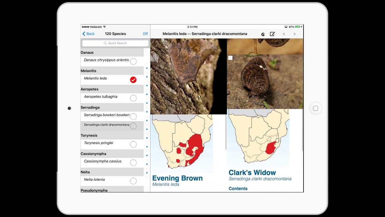 Woodhall's Butterflies of South Africa app demo