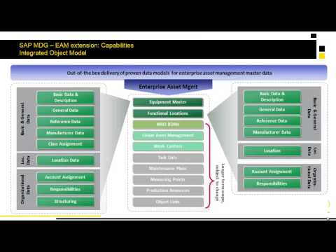 Introducing Master Data Governance for Enterprise Asset Management