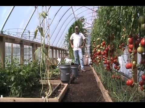 Amending Raised Beds With Organic Amp Natural Fertilizers
