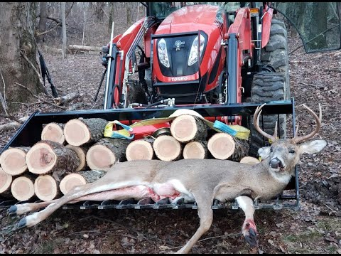 #636 Best Vacation Day! Firewood and Harvested a Buck!