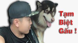 NTN - Bán Gấu Alaska Cho Người Lạ (Sell alaska bear to a strange)