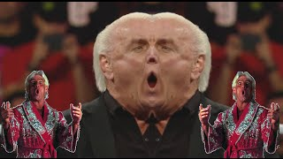 ytp flair exe has stopped working wwe