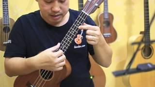 Học đàn Ukulele Bài 5 - Điệu Valse - Đệm hát happy birthday