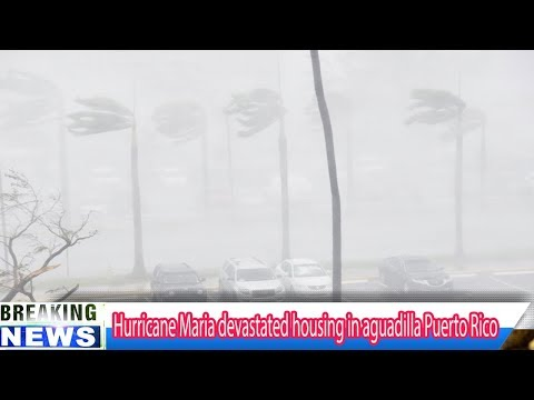 Hurricane Maria devastated housing in aguadilla Puerto Rico - Breaking Daily News
