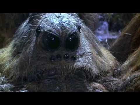 Top 5 Giant Movie Spiders  TheCrypticCinema