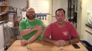 What Do Galaxy Hops Taste Like? SMaSH Beer Experiment