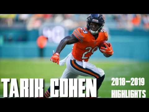 Tarik Cohen | 2018-2019 Season Highlights