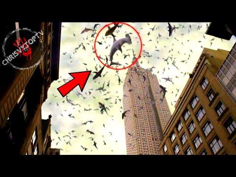 CVIJA FEAT. DARA BUBAMARA - NOC ZA NAS (OFFICIAL VIDEO) from YouTube · Duration:  4 minutes 14 seconds