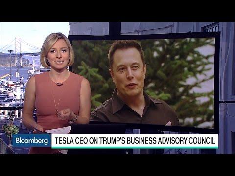 Elon Musk's Influence on President Trump