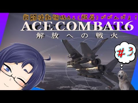 【ACE COMBAT 6】ACMSAI(解雇)が頑張る! ~本土進攻編~ 【#3】