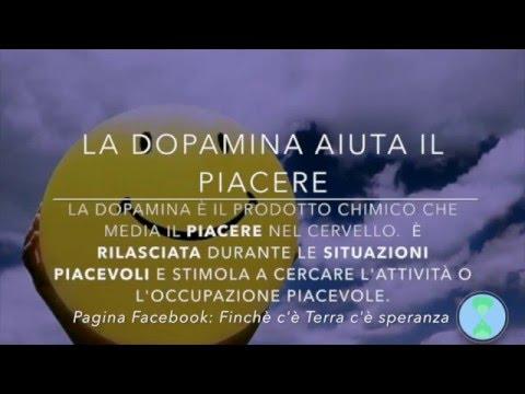 L'importanza della Dopamina