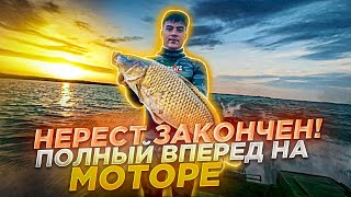 Сомы и Сазаны на открытие летнего сезона Подводной охоты и Рыбалки